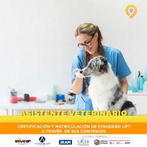 Curso Asistente Veterinario - Presencial - A distancia - Instituto Avanzar